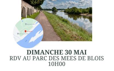 Rencontre au bord de Loire